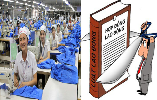 Thực tập sinh phá bỏ hợp đồng xuất khẩu lao động sẽ bị xử lý thế nào?
