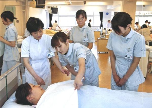 Nhật Bản tập trung đào tạo ở chuyên môn cao cho người học